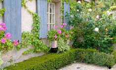 Beautiful yard landscaping and decorating ideas improve not just outdoor living spaces but the entire house