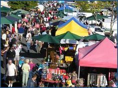 Nelson Market - I used to sell cactus & succulents on Saturday mornings - very early start to get van loaded & then set up stall. Nelson New Zealand, Places Ive Been, Places To Visit, New Zealand Houses, King's Landing, Kiwiana, New Market, Mornings, Things To Do