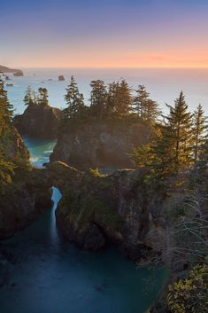 #Oregon #Coast #Trees #Sunset #Ocean #Gorgeous