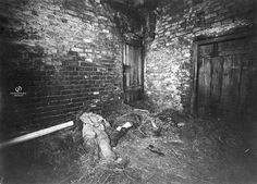 One of the strangest unexplained crime mysteries of all time - The Hinterkaifeck Mystery. In Germany, 1922, the murders of six people at the Hinterkaifeck farmstead shocked the nation. This wasn't just because of the gruesome nature of the case, but also because the case was so incredibly weird, and it remains unsolved to this day.