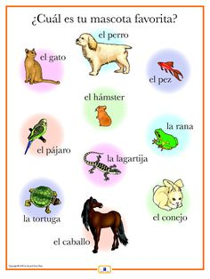 Introduce pet names with this colorful 18 x 24 in. poster that: - includes a free guide with teaching suggestions and practice worksheets - is sent flat (except international orders)