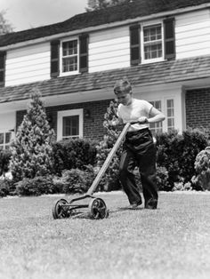the old push mower --- the 'green' way to cut grass.