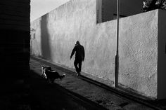 Alley Cats // Brixton // Johannesburg // Part of my series for the and Shaffer INTERPRETATION contest. Help me win by voting for my pics here, and I'll reward you in the afterlife!