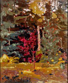 Tom Thomson Catalogue Raisonné   Maple Sapling, Algonquin Park, Fall 1915 (1915.87)   Catalogue entry