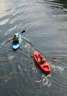 Kayaking Class or Kayak Tour for One or Two