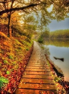 | October | Nature Walks