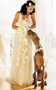 Sorry- not getting married- just do NOT want to lose this picture!! Been trying to locate these orchids and pic forever!!