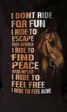 Horses - Horses Funny - Funny Horse Meme - #horsememe #horse #funnyhorse -  Horses  The post Horses appeared first on Gag Dad. Rodeo Quotes, Equine Quotes, Cowboy Quotes, Cowgirl Quote, Horse Sayings, Hunting Quotes, Equestrian Funny, Equestrian Quotes, Equestrian Problems