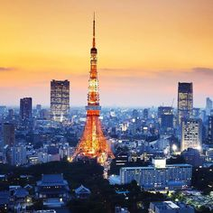 At 332.9 metres the Tokyo Tower is the second-tallest structure in Japan. It's also painted white an orange to comply with air safety regulations! #tokyo #tokyotower #japan #tokio #view #wanderlust #travel Hotels-live.com via https://www.instagram.com/p/BBaEh4wFaFc/ #Flickr