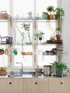 Glass shelves like this would be nice over kitchen window