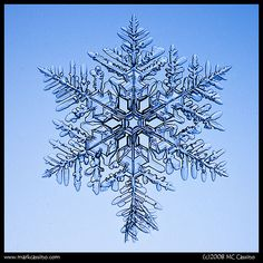 YEP- A SNOWFLAKE   IMGP2922 by Mark Cassino, via Flickr