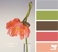 { faded } flora - color inspiration