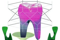 The Promise of Growing New Teeth Dental stem cells could revolutionize treatment for patients who face extractions - See more at: http://now.tufts.edu/articles/promise-growing-new-teeth#sthash.hswQdXUr.dpuf
