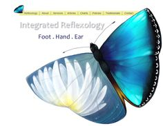 Home - Integrated Reflexology Ear Reflexology, Pressure Points, Medical Care, Natural Cures, Self Help, Aromatherapy, Butterflies, Alternative, Healing