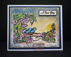 New Temptingly Tropical collection of rubber stamps, handdrawn by Sheena Douglass & available from #crafterscompanion