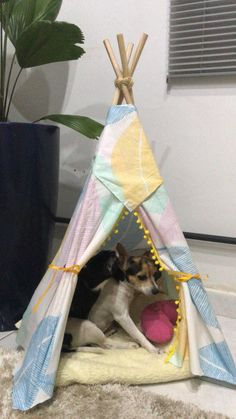 Pet Beds, Dog Bed, Cat Diys, Cat House Diy, Cat Tent, Cat Playground, Cat Room, Cat Crafts, Handmade Home