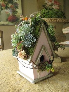 Such a beautiful bird house with Succulents growing on top and perch....love this!