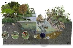 "Erosion/Weathering/Decomposition  ""Stream Damage"" - Illustration @ Science-Art Com via Frank Ipplito's gallery"