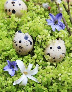 Easter table decoration idea from MILONI. www.miloni.pl/en