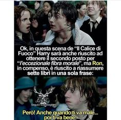 vai Ron ti stimo😅😅 Harry Potter Wizard, Harry Potter Tumblr, Harry Potter Anime, Harry Potter Film, Harry Potter Love, Harry Potter Fandom, Harry Potter World, Harry Potter Memes, Harry And Ginny