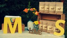s'more bar vow renewal rustic country wedding