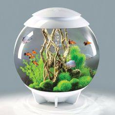 biOrb Halo 60 - 16 Gallon Fresh Water Acrylic Aquarium Kit - White (G5500-C-WHT-US)