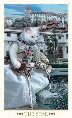The Star The Baroque Bohemian Cats' Tarot Publisher: Magic Realist Press 2004