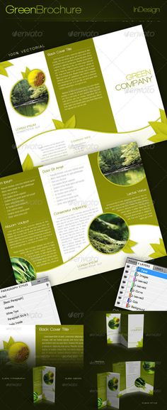 Graphicriver - Green Trifold Brochure InDesign Template