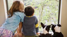 W czasie ferii dzieci się nudzą?* * * * * * www.polskieradio.pl YOU TUBE www.youtube.com/user/polskieradiopl FACEBOOK www.facebook.com/polskieradiopl?ref=hl INSTAGRAM www.instagram.com/polskieradio