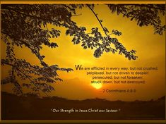 Inspirational Bible Quotes About Strength | Inspirational Bible Verse Wallpapers