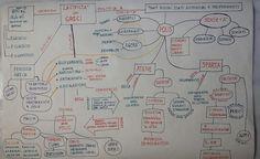 Unconventional Mom: La Civiltà Greca: Mind Map per la quinta elementar...