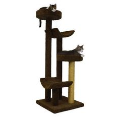 "Molly and Friends 66"" Bed and Cradle Cat Tree Color: Brown, Poles Color: Tan"