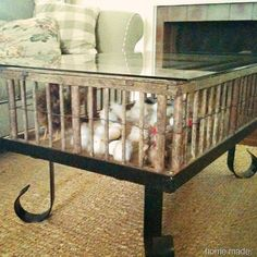 1000 Images About Chicken Coop Tables On Pinterest