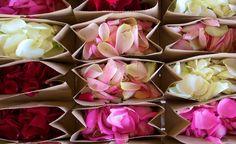 800 pétales de roses #francefleurs #mariage #fleurs