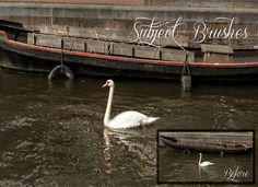 5 SUBJECT and SHARPNESS Instant Lightroom Brushes by KAICreation
