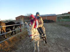 ¿subir en un burro? experiencia, y diversión, en granja escuela Vinaceite. A solo 15km Hotel Rural Rincón del Cierzo, Lécera.