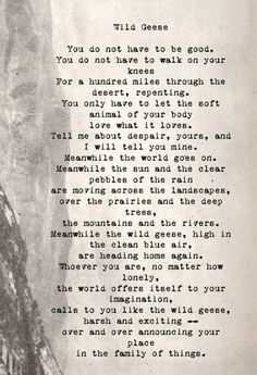Wild Geese by Mary Oliver. Not sure if I've posted this before but it's one of my favorite poems by the great Mary Oliver. Pretty Words, Love Words, Beautiful Words, This Is Your Life, In This World, Wild Geese Mary Oliver, Mary Oliver Poems, Quotes To Live By, Me Quotes