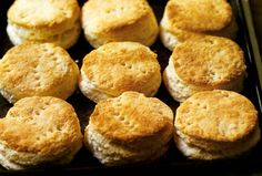 Edna Lewis' Hot Crusty Buttermilk Biscuits