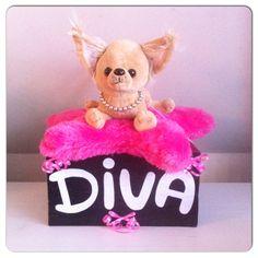 Diva Chiwawa sinterklaas surprise  www.sinterklaassurprises.jouwweb.nl