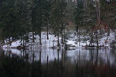 Teich Spiegelung