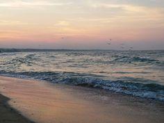 Vorreiportarti viada tutta questa genteche dice di amare che ci promette una terra miglioree poici lascia a mare.Gio Evan#sunset #tramonto
