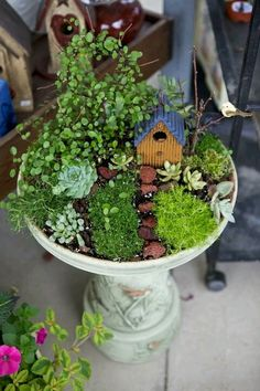 Fairy Garden Ideas. My girls would like this in their window.