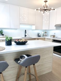 used kitchen cabinets for sale High Gloss White Kitchen, High Gloss Kitchen Cabinets, Used Kitchen Cabinets, Kitchen Cabinet Colors, Kitchen Showroom, Condo Kitchen, Kitchen Remodel, Handleless Kitchen, Ikea Inspiration