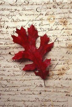 осень. письмо