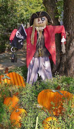 Pirate Scarecrow for next year& town wide Scarecrow contest Scarecrow Festival, Halloween Scarecrow, Holidays Halloween, Halloween Party, Halloween Decorations, Halloween Costumes, Scarecrow Ideas, Halloween Ideas, Scarecrows For Garden