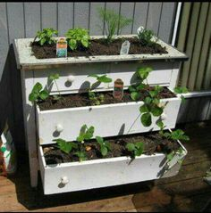 garden planters out of them. These recycled dresser garden planters are just awesome way to give a one more serviceable life to your old chests of drawers! Garden Boxes, Garden Planters, Herb Garden, Home And Garden, Garden Fun, Tower Garden, Indoor Garden, Container Gardening, Gardening Tips