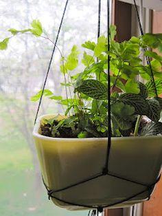 hanging planter, vintage dish