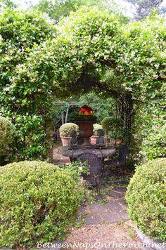 Scenes From The Garden Of Ryan Gainey