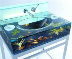 "A very ""out of the box"" home aquarium"