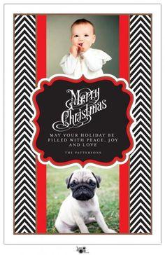 Cute for a Christmas card!  #card #Christmas